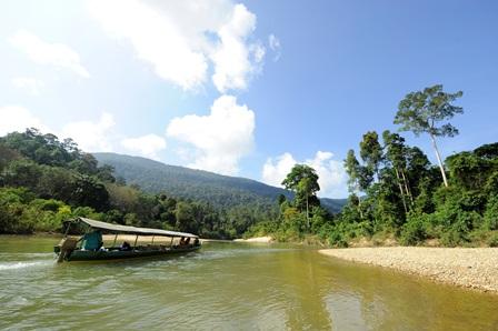 Wir stellen vor: Nationalpark Endau-Rompin